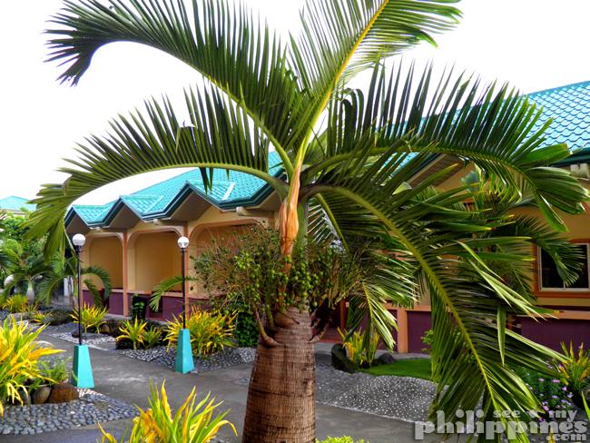 Dawal Beach Resort Candelaria Zambales